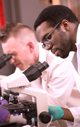 Photo of MCC students using microscopes