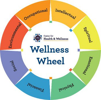 wellness wheel - Romeo.landinez.co