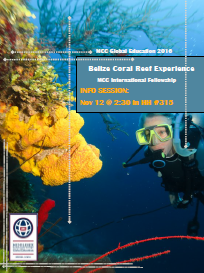Belize Coral Reef Experience
