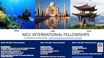 MCC International Fellowships